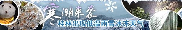 直播回顾:桂林下雪了!下雪了!瑞雪兆丰年,各地雪景带给您!