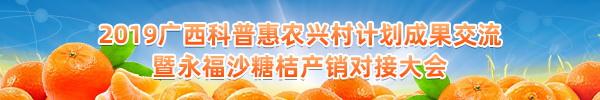 直播回顧:永福沙糖桔產銷大會來啦!全國百名網紅還將主播