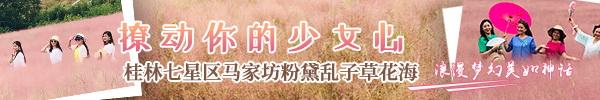 正在直播:桂林七星区马家坊粉黛乱子草花海,撩动你的少女心!