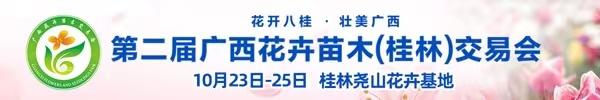 """直播回顾:""""花开八桂,壮美广西""""第二届广西花卉苗木交易会拉开帷幕"""